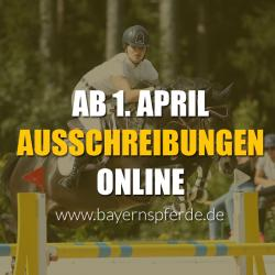 So können Sie die Online-Ausschreibungen auf bayernspferde.de einsehen